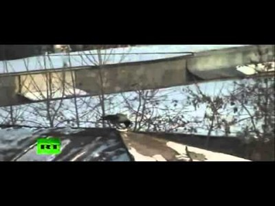 Russian Roof-Surfin' Bird caught on Tape!