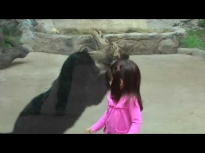 Black Panther Attacks Little Girl At Zoo