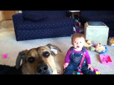 Baby Laughing Hysterically Seeing a Dog Catch Soap Bubbles !