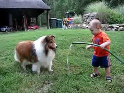 Baby and Dog play with a Hose!