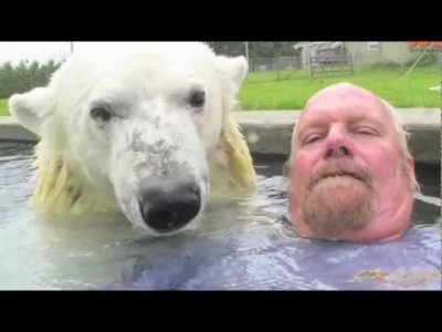 The Only Man who can Swim with A Polar Bear