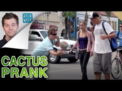 The Cactus Prank
