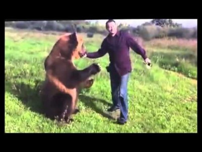 Very Talented Russian Bear and his Awesome Friend