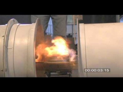 Acoustic Suppression of Flames