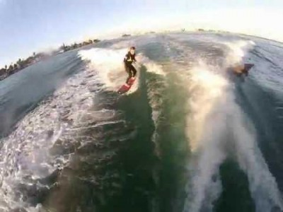 Surfing with Dolphins at St. Pete Beach
