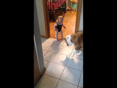 Dog teaching baby to Jump