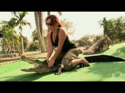 Alligators and Mini Golf Don't Mix