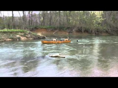 Dog Saves Friends in Canoe