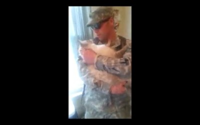 Soldier welcomed Home by a Cat